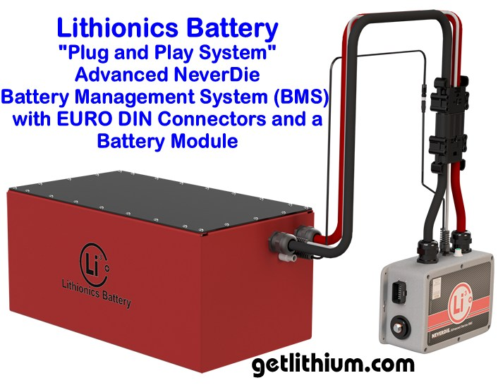 Lithionics battery management systems for lithium ion batteries